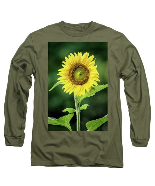 Sunflower In Bloom Long Sleeve T-Shirt