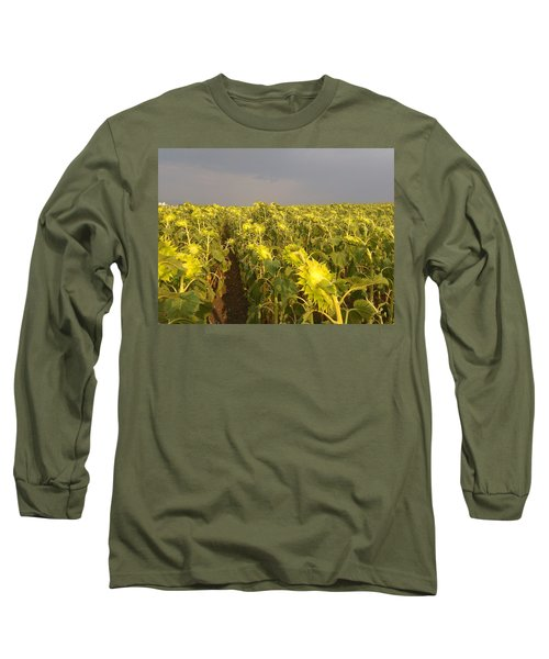 Sunflowers Before The Storm Long Sleeve T-Shirt