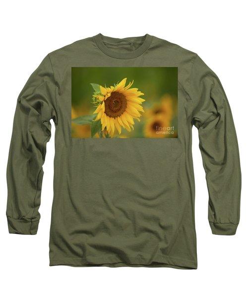 Sunflowers In Field Long Sleeve T-Shirt