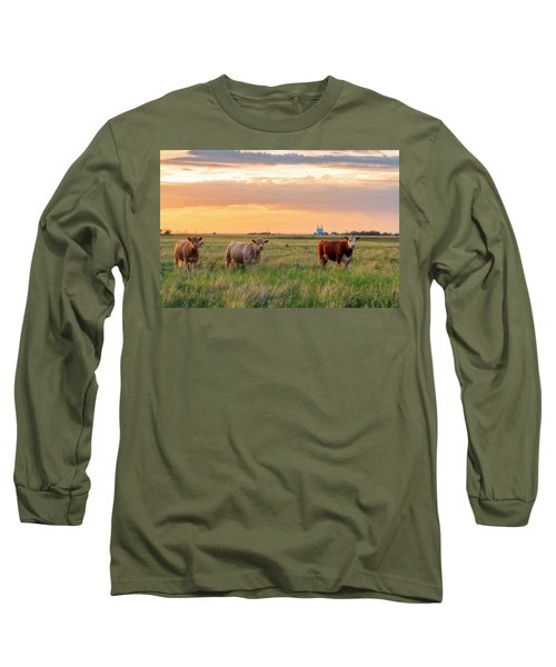 Sunset Cattle Long Sleeve T-Shirt