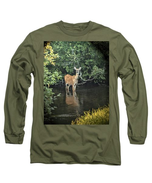 Sunset River Doe Long Sleeve T-Shirt by Judy Johnson