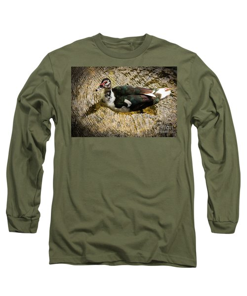 Swimming In Gold Wildlife Art By Kaylyn Franks Long Sleeve T-Shirt