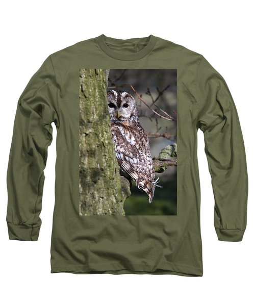 Tawny Owl In A Woodland Long Sleeve T-Shirt