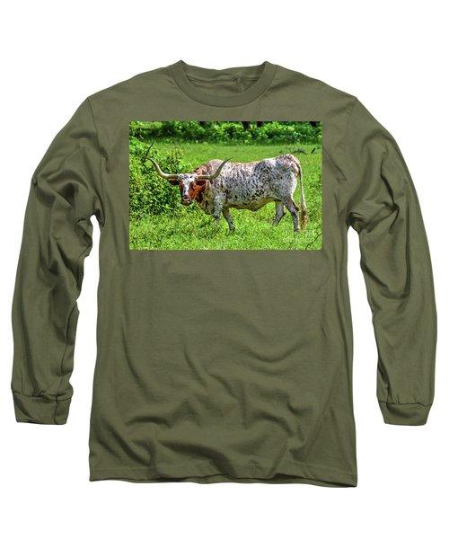 Texas Longhorn Long Sleeve T-Shirt by Ray Shrewsberry