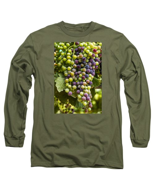 The Art Of Wine Grapes Long Sleeve T-Shirt by Teri Virbickis
