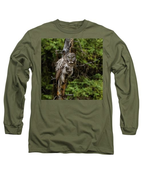 The Captivating Great Grey Owl Long Sleeve T-Shirt