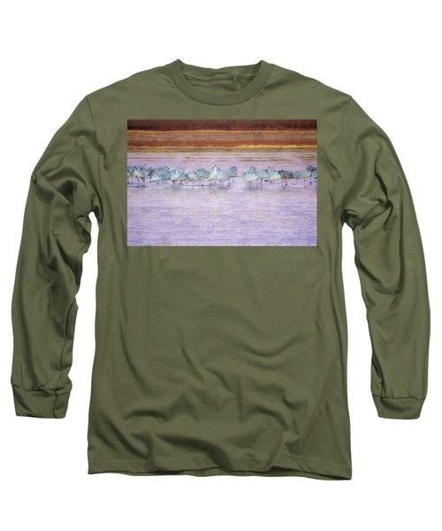 The Cranes Of Bosque Long Sleeve T-Shirt