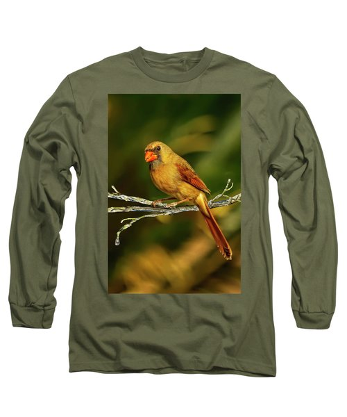 The Female Cardinal Long Sleeve T-Shirt