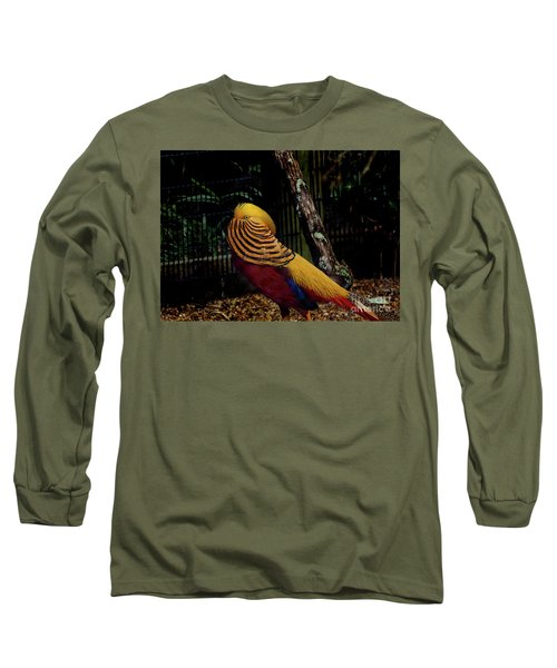 The Golden Pheasant Or Chinese Pheasant -atlanta Ga, Zoo Long Sleeve T-Shirt