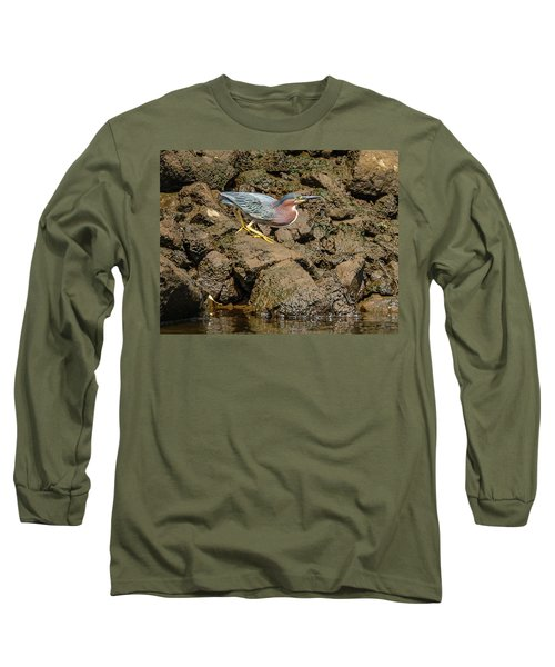 The Green Heron Long Sleeve T-Shirt by Jerry Cahill