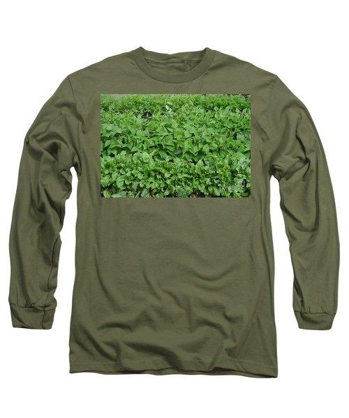 The Market Garden Landscape Long Sleeve T-Shirt