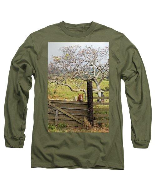The Maui Daze Long Sleeve T-Shirt