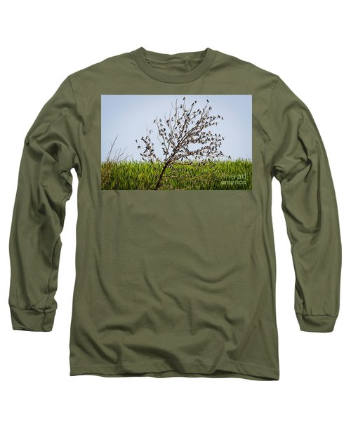 Long Sleeve T-Shirt featuring the photograph The More The Merrier- Tree Swallows  by Ricky L Jones