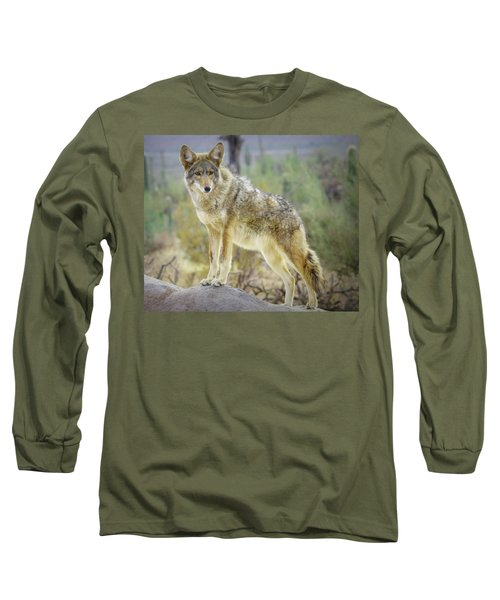 The Stance Long Sleeve T-Shirt