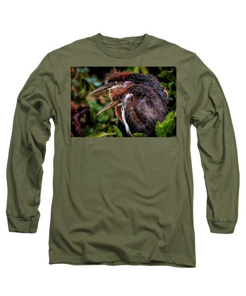 The Twins Long Sleeve T-Shirt by Cyndy Doty