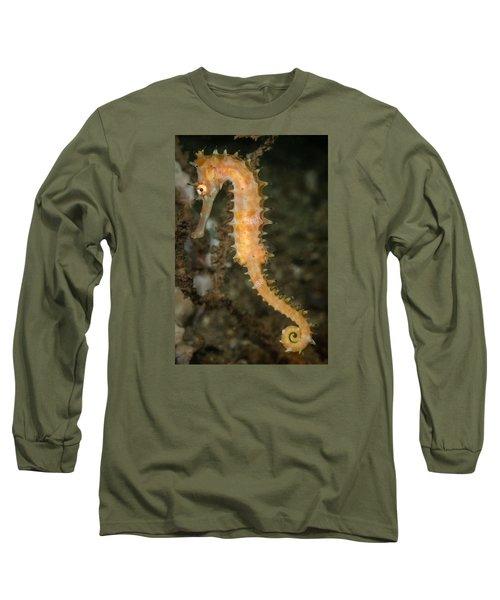 Thorny Seahorse Long Sleeve T-Shirt