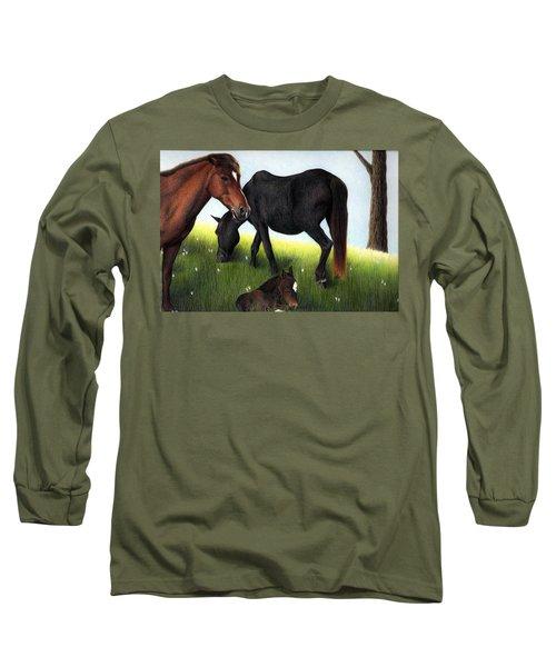 Three Horses Long Sleeve T-Shirt