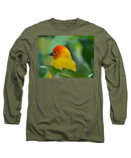 Through A Child's Eyes - Close Up Yellow And Orange Bird 2 Long Sleeve T-Shirt by Exploramum Exploramum