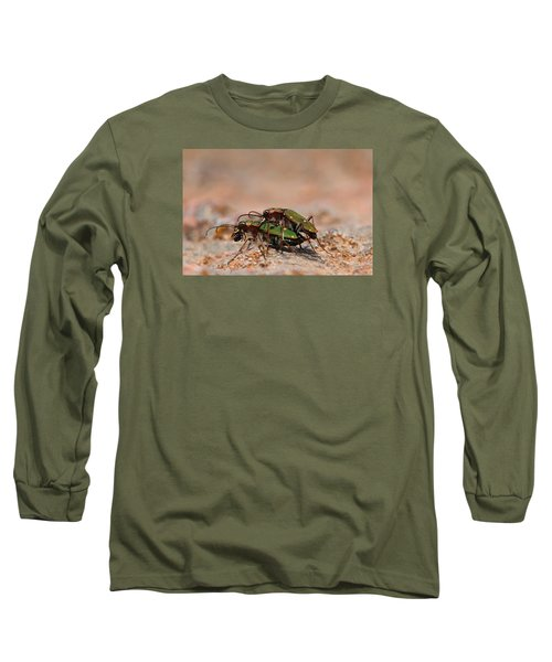 Long Sleeve T-Shirt featuring the photograph Tiger Beetle by Richard Patmore