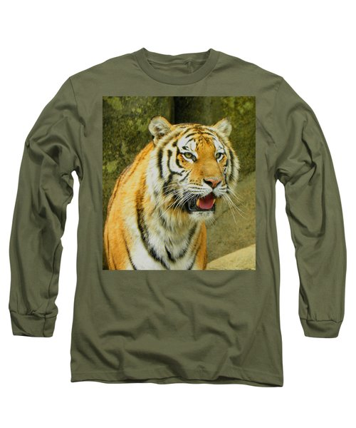 Long Sleeve T-Shirt featuring the photograph Tiger Stare by Sandi OReilly