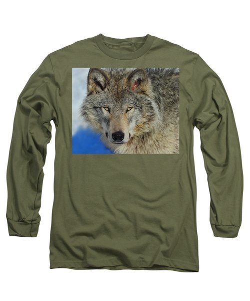 Timber Wolf Portrait Long Sleeve T-Shirt