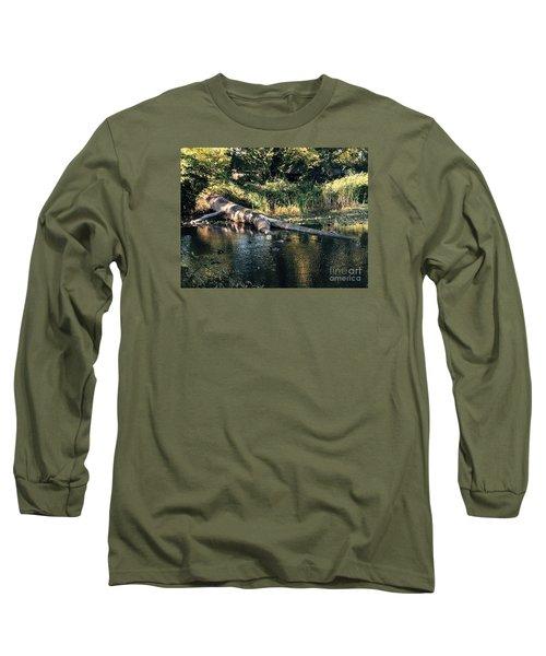 Tired Tree Long Sleeve T-Shirt