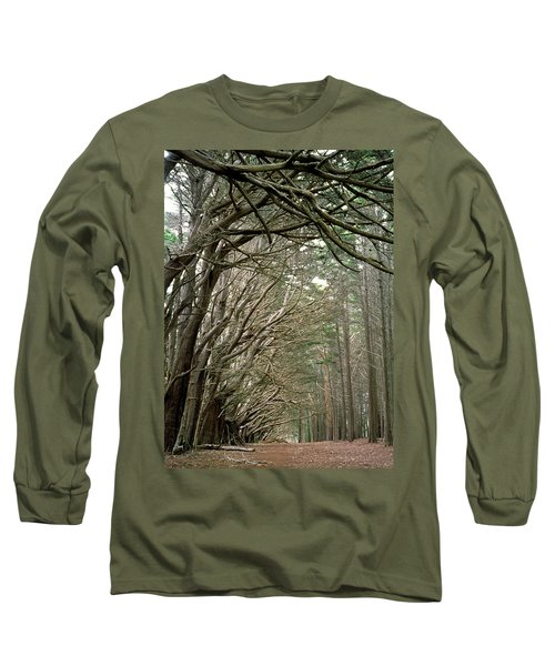 Tree Lane Long Sleeve T-Shirt by Art Shimamura