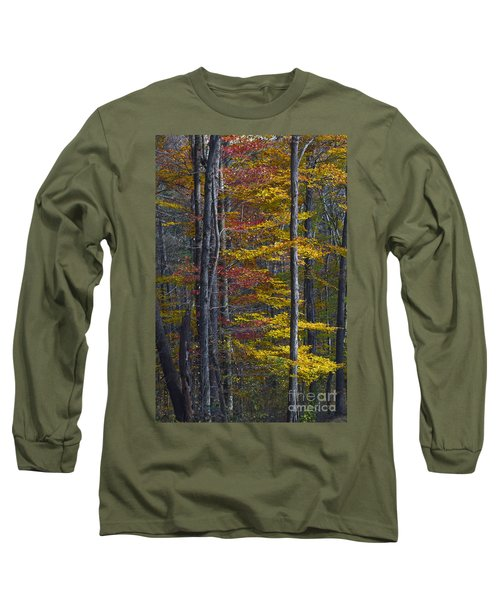 Trees With Autumn Colors 8260c Long Sleeve T-Shirt