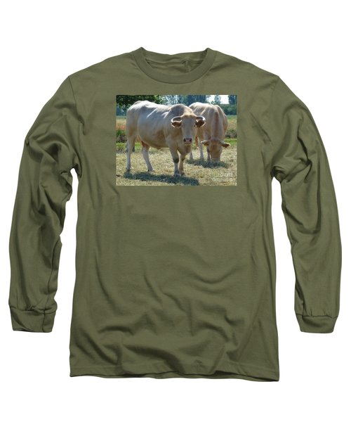 Long Sleeve T-Shirt featuring the photograph Two Cows by Jean Bernard Roussilhe