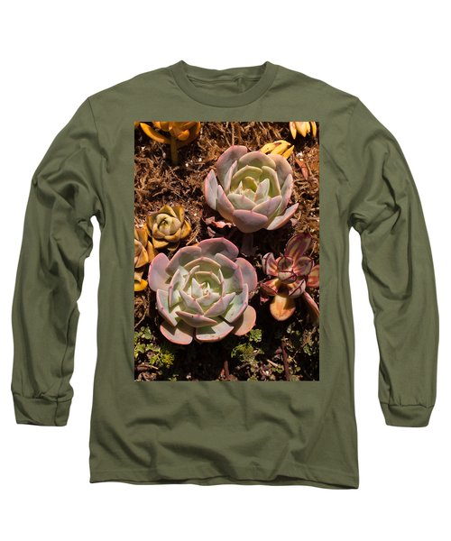 Two Succulents  Long Sleeve T-Shirt by Catherine Lau