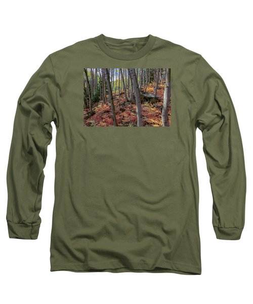 Under The Aspens Long Sleeve T-Shirt by Perspective Imagery