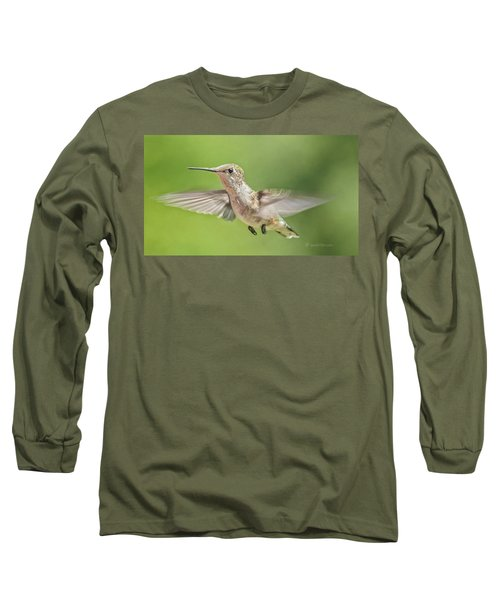 Untitled Hum_bird_three Long Sleeve T-Shirt