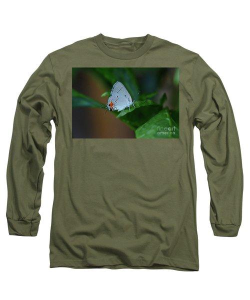 Unusual Butterfly Grey Hairstreak Strymon Melinus Long Sleeve T-Shirt