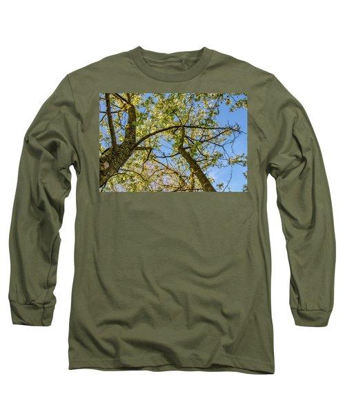 Up A Tree Long Sleeve T-Shirt