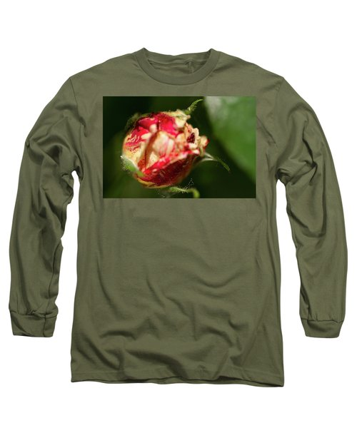 Variegated Long Sleeve T-Shirt
