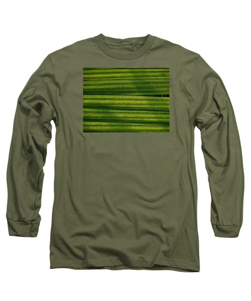 Venetian Blinds Long Sleeve T-Shirt by Tim Good