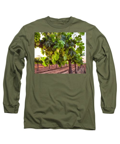 Vineyard 3 Long Sleeve T-Shirt