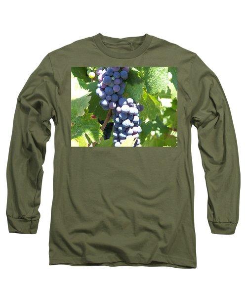 Vino On The Way Long Sleeve T-Shirt by Pamela Walrath