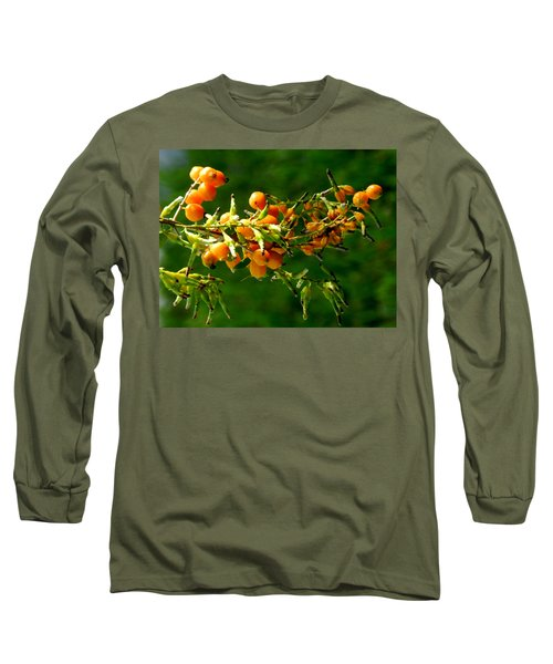 Vivid Berries Long Sleeve T-Shirt