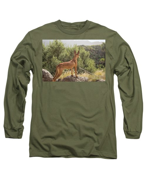 Watchful Dog Long Sleeve T-Shirt by Patricia Hofmeester