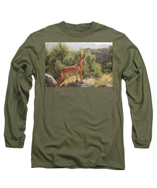 Watchful Dog Long Sleeve T-Shirt