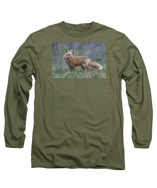 Long Sleeve T-Shirt featuring the photograph Watchful by Gary Lengyel