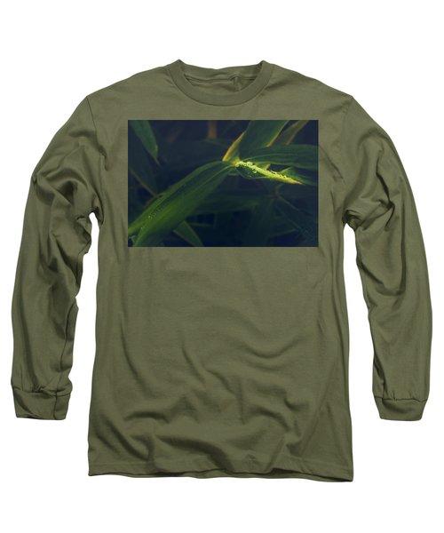 Water Catcher Long Sleeve T-Shirt