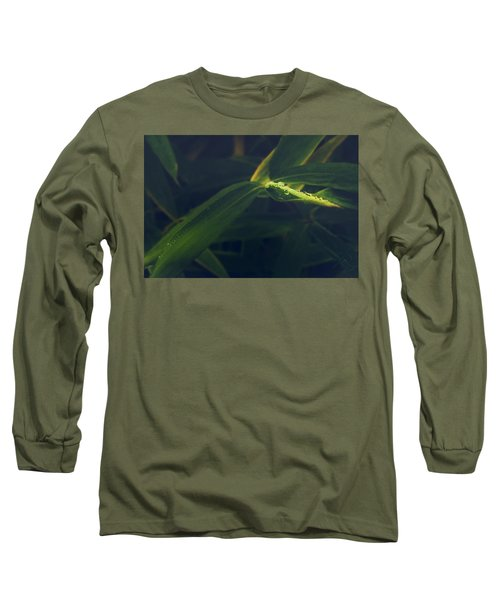 Water Catcher Long Sleeve T-Shirt