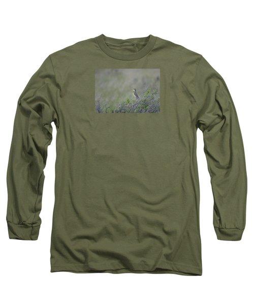 Western Meadowlark Morning Long Sleeve T-Shirt