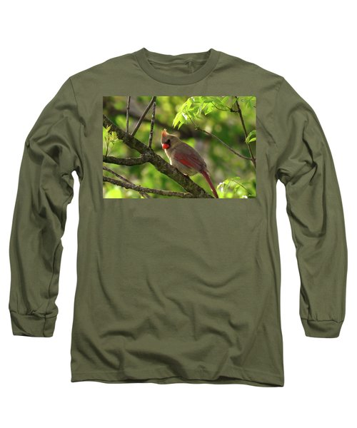 What's That Noise  Long Sleeve T-Shirt