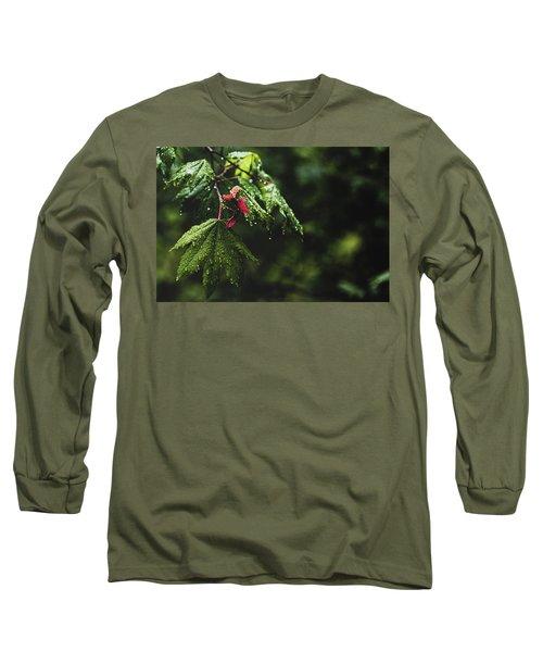 Whirlygig Long Sleeve T-Shirt