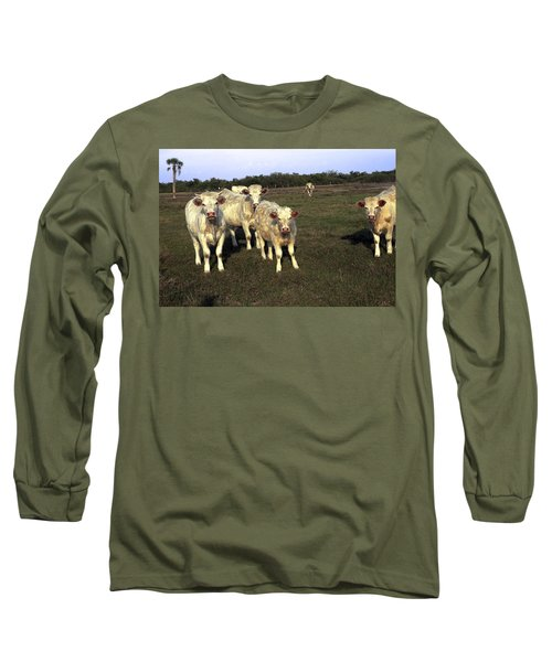 Long Sleeve T-Shirt featuring the photograph White Cows by Sally Weigand