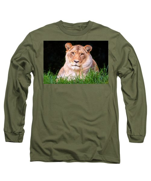 Long Sleeve T-Shirt featuring the photograph White Lion by Alexey Stiop