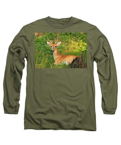 White-tail Buck Resting Long Sleeve T-Shirt